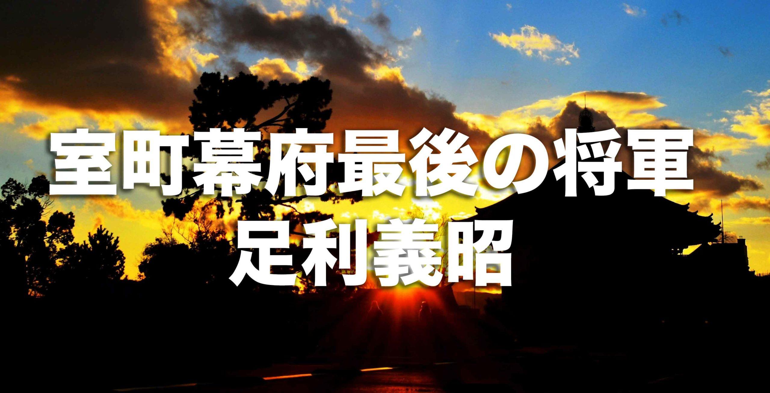 室町幕府最後の将軍「足利義昭」はどんな人?その生涯と人物像を徹底解説!