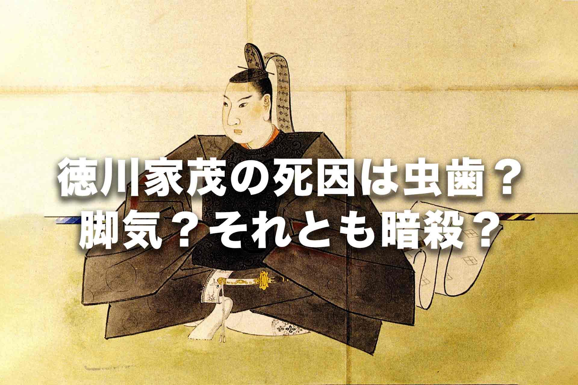 徳川家茂の死因は虫歯?脚気?それとも暗殺?徳川14代将軍の最後の姿を解説!