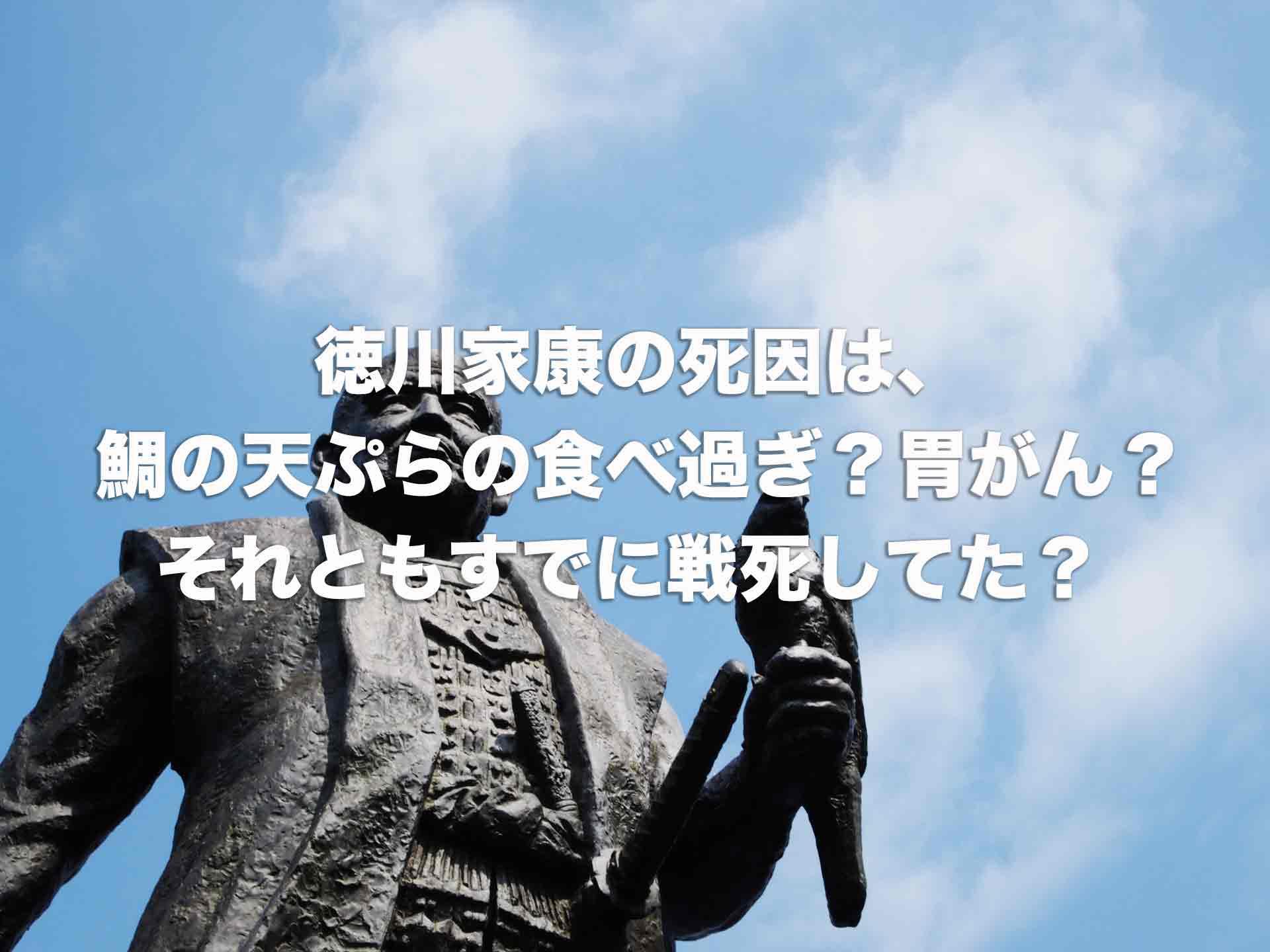 徳川家康の死因は鯛の天ぷらの食べ過ぎ?胃がん?それともすでに戦死してた?